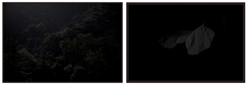 "Sean McFarland, ""Untitled (ridge)"", archival pigment print, *"" x 12″ each, 2013. image courtesy of Eli Ridgway Gallery"