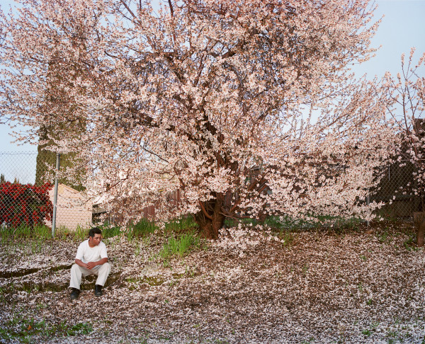 Larry Sultan. Antioch Creek, 2008. Chromogenic print, edition of 9. 40 5/8 x 49 3/4 in. © Estate of Larry Sultan. Courtesy of the Stephen Wirtz Gallery and Pier 24. From Proximities I at the Asian Art Museum