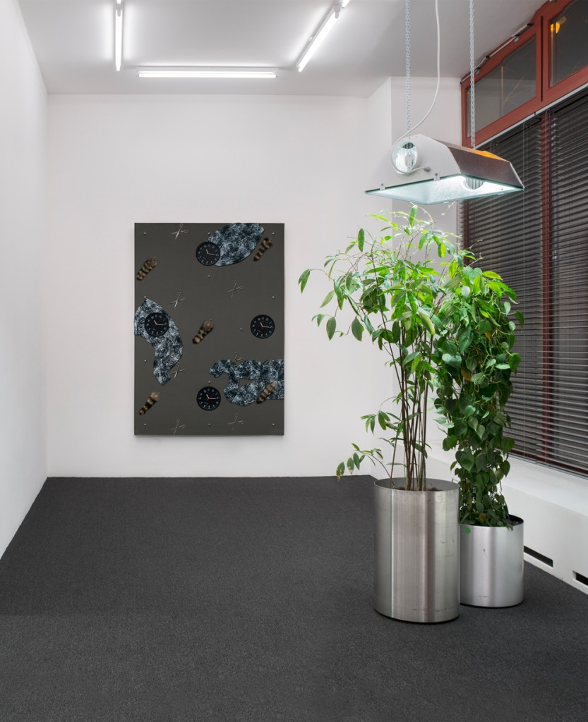 Installation view.  Courtesy of Croy Nielsen.