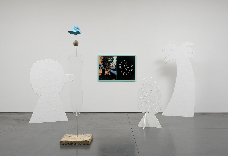 Sam Davis, installation view Courtesy of the artist and Perry Rubenstein Gallery