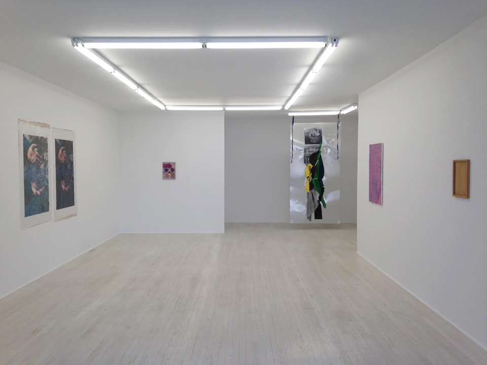 Installation view. Courtesy of Halsey Mckay Gallery, New York.