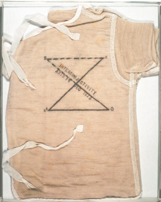 """""""Post-Ppartum Document"""" by Mary Kelly. Courtesy of the Hammer Museum."""