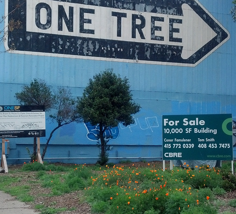 """ONE TREE,"" Rigo 23. Photo by Lani Asher."