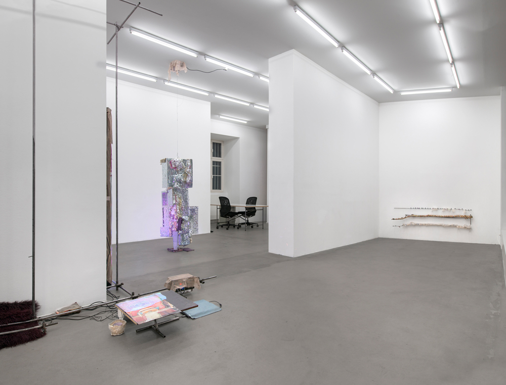 Installation view.  Courtesy of Croy Nielsen, Berlin.