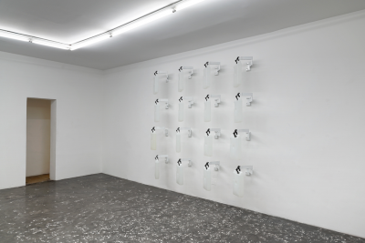 SEAN RASPET, New Flavors and Fragrances, installation view. Courtesy of New Galerie.