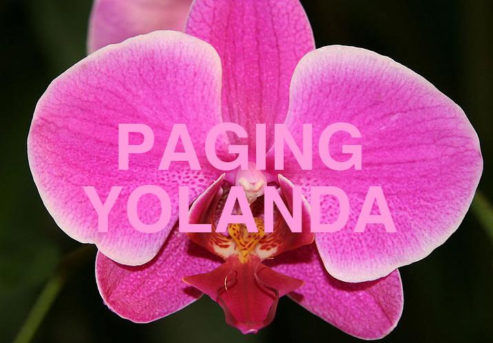 210_paging-yolanda