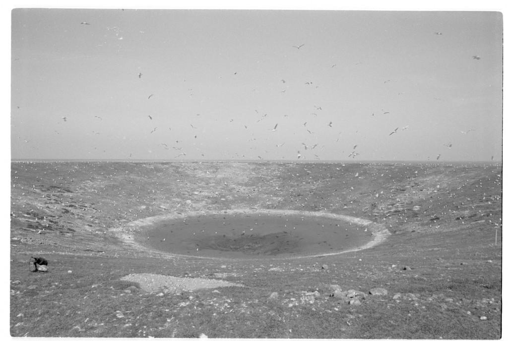 "Neil Henderson, ""Tidal Island,"" 2014."