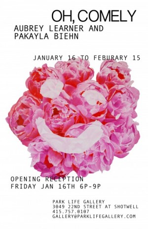 """OH, COMELY"" at Park Life Gallery, opening January 16."