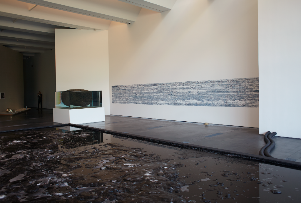 Pierre Huyghe, installation view at LACMA, 2015. Photo courtesy of Ola Rindal.