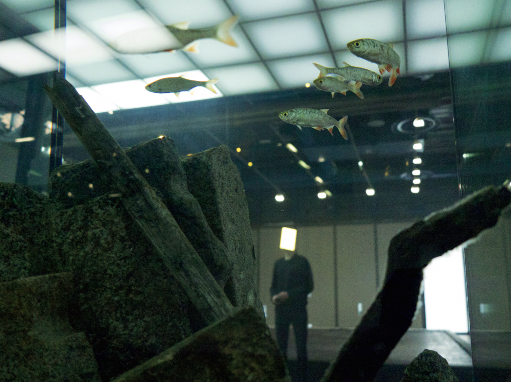 Pierre Huyghe, installation view at the Centre Georges Pompidou, 2013–2014. Courtesy of the artist and Marian Goodman Gallery, New York / Paris.
