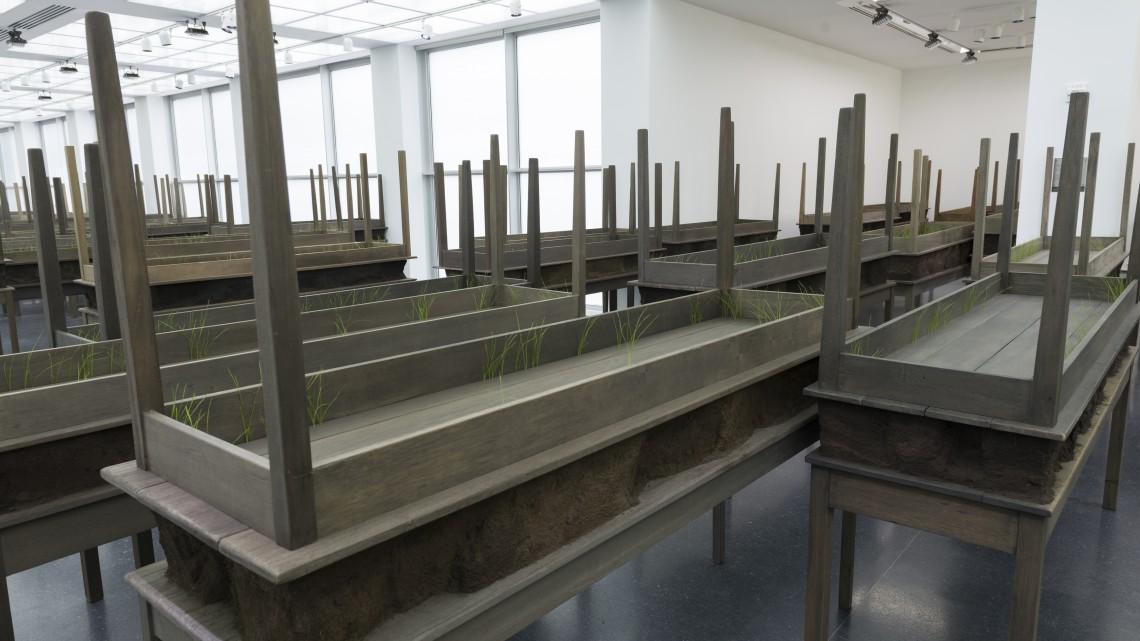 "Doris Salcedo, ""Plegaria Muda"" (detail), 2008-10. Installation view, Doris Salcedo, MCA Chicago Inhotim Collection, Brazil. Photo: Nathan Keay, © MCA Chicago."