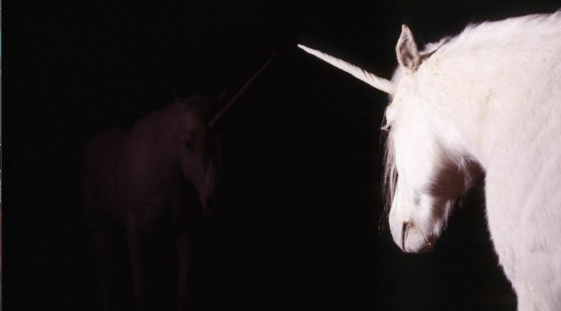 "MONTENEGRO:  Montenegrin biologist and shaman Aleksandar Duravcevic was commissioned by art critic Jerry Saltz to genetically create a unicorn as his chauffeur.   Mr. Saltz named the unicorn ""I Wont be Upstaged."""