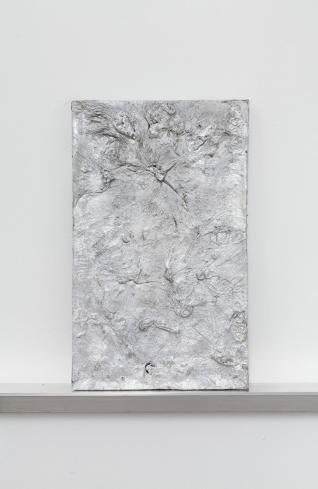 Plate 13, 2014. Aluminum. 20 x 12 x 0.75 inches. Courtesy of the artist.
