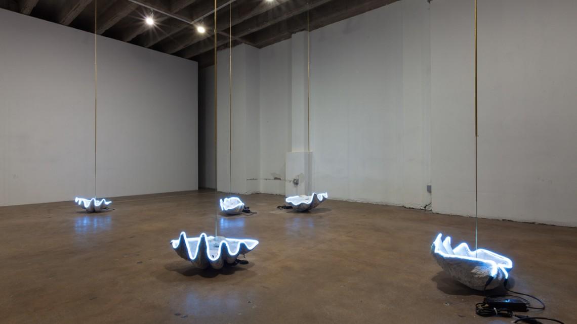 Installation view, Venus Anadyomene, Elaine Cameron-Weir at Ramiken Crucible, 2014. Courtesy of the artist.