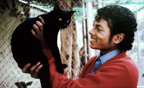 "The late Michael Jackson with his cat aptly named ""Snow White""."