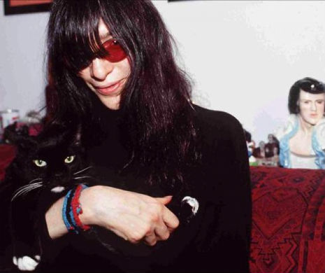 Somewhere in Joey Ramone's hair rests a cat.