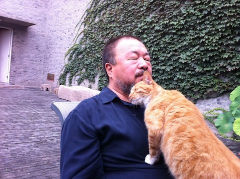 "Ai Weiwei with his cat he lovingly calls ""The Chinese State""."