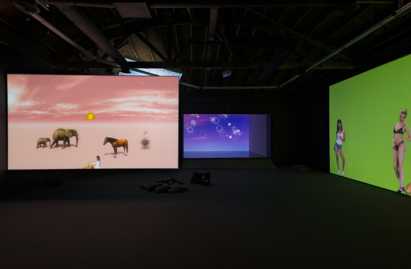 """Petra Cortright. Installation view, """"Niky, Lucy, Lola, Viola,"""" 2015. Courtesy of Lyn Winter. Photo: Jeff McLane"""