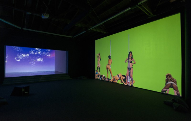 "Petra Cortright. Installation view, ""Niky, Lucy, Lola, Viola,"" 2015. Courtesy of Lyn Winter. Photo:  Jeff McLane"