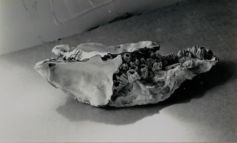 "Jay DeFeo. ""Untitled,"" 1972. Gelatin silver print. 4 3/16 x 6 15/16 inches, 14 3/4 x 15 3/4 inches framed. Courtesy of Hosfelt Gallery"