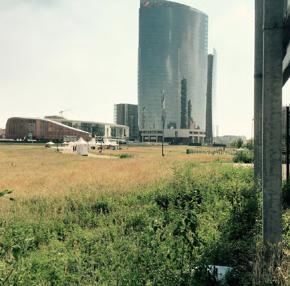 Wheatfield and UniCredit, Milan, 2015. Photograph by Caroline Maxwell.