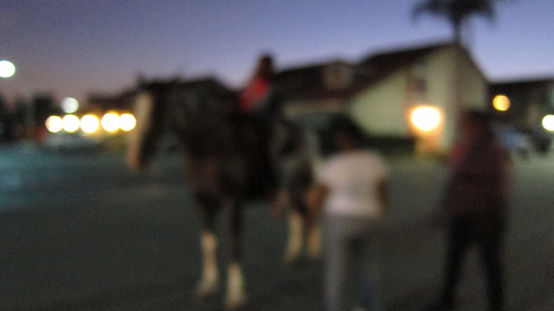 Untitled (Pony ride, Compton, CA), 2015. Archival pigment print in lightbox, 24 x 32 inches. Edition of 3. Courtesy of the artist and Charlie James Gallery.