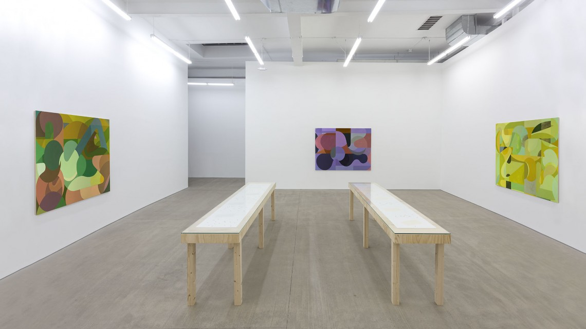 Installation of Sebastian Black: Tales I Knows, November 5, 2015 - January 10, 2016 at CLEARING, Brooklyn, NY. Courtesy of CLEARING