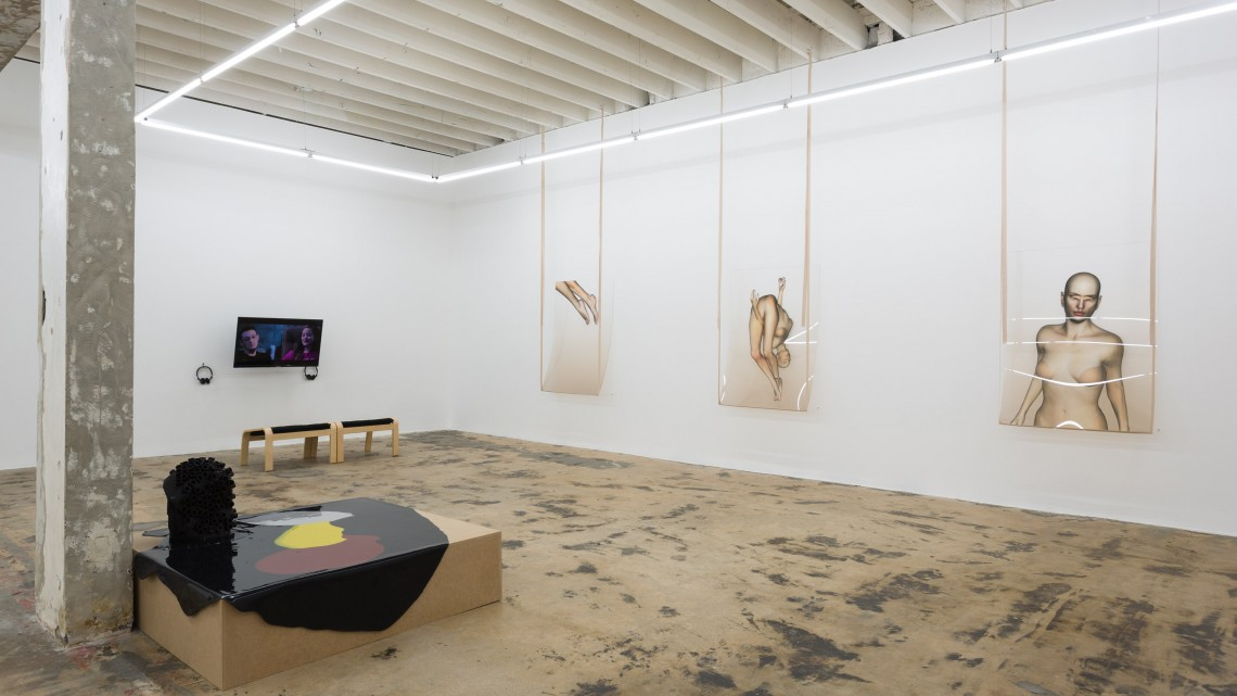 Installation view, In the Flesh, Part II: Potential Adaptations at Gallery Diet, Miami, 2016. Courtesy of Gallery Diet.