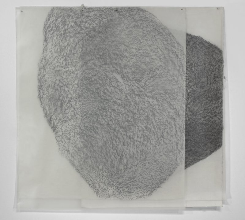"Theodora Varnay Jones, F-5, 2015. Frottage (graphite on handmade Japanese papers, polyethylene films) 42.5"" x 43.5"""