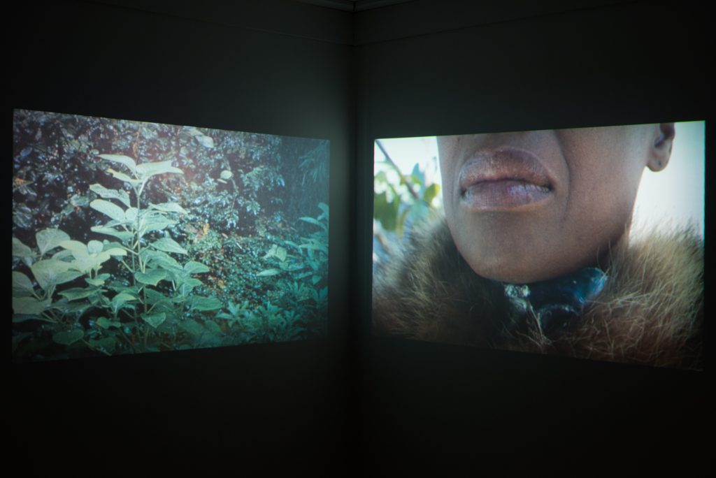 Suné Woods, A Feeling Like Chaos, 2015. Two-channel video installation