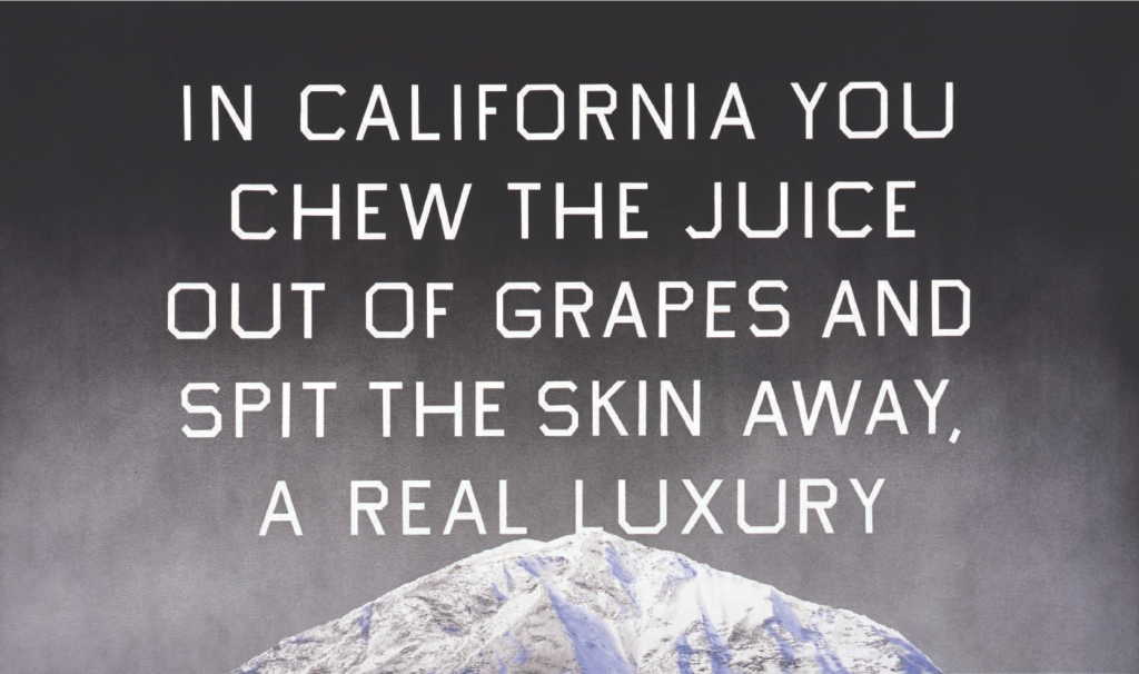 California Grape Skins, 2009. Acrylic on canvas, 38 x 64 inches. © Ed Ruscha.