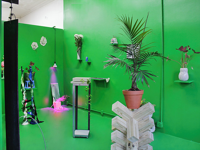 Installation view, The Plant Show at 99¢ Plus, Brooklyn, 2016. Courtesy of 99¢ Plus.