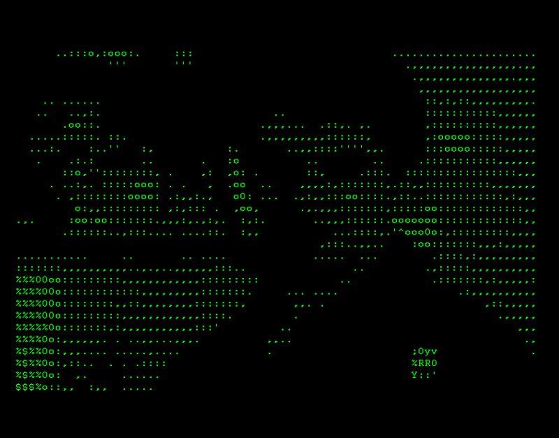 "Vuk Ćosić, ASCII Taxi Driver Year, 1998. ASCII Video Dimensions: 1'29"" Courtesy of the artist"