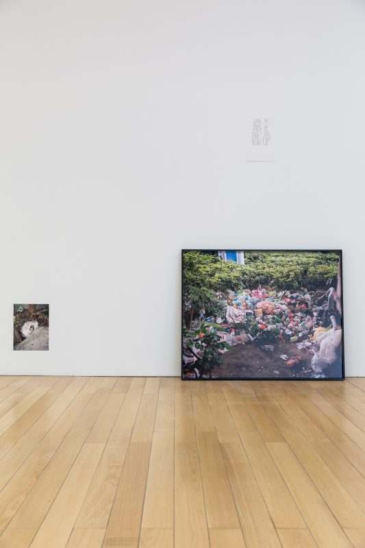 I – Hsuen Chen, Still Life Analysis II, The Island, 2015 -2016. Archival inkjet prints, framed photos 4: 82 x 102 cm/ 3: 61 x 92 cm, dimensions variable. Courtesy of Taipei Fine Arts Museum.
